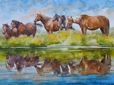 Horse reflections,  35cm x 50cm, 2015