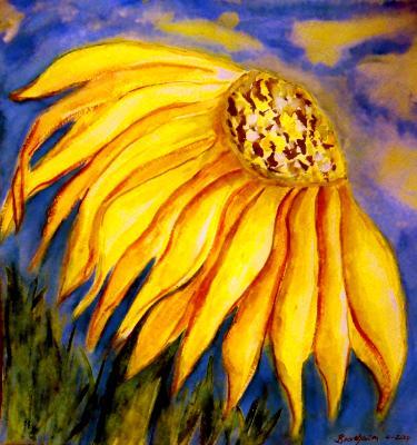 Yellow Cornifee