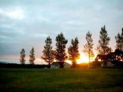 Sundown on Love