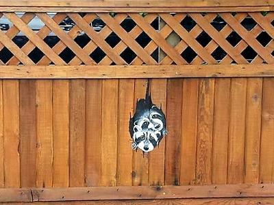 peeking fence mural