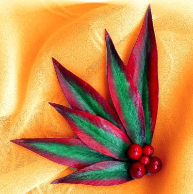 Nandina Leaf Pin