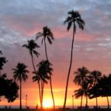 Sunkiss Sunset