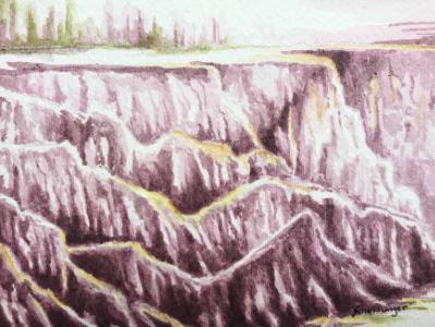 Escarpment at North Torrey Pines