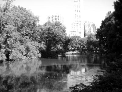 """Central Park"""
