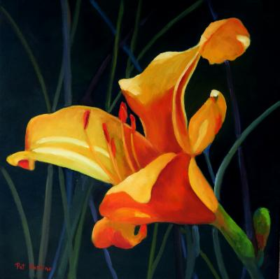 Yellow & Orange Day Lily - oil - 20x20