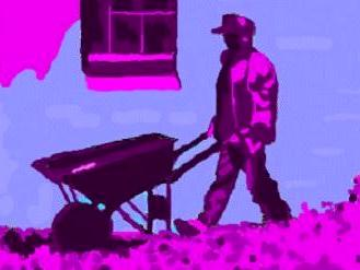 The Day Worker