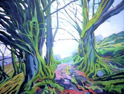 Beech trees at old Radworthy, Exmoor