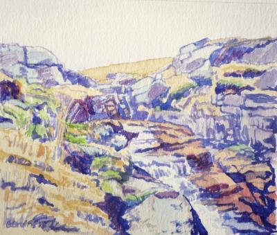 Along the East Dart river, Dartmoor