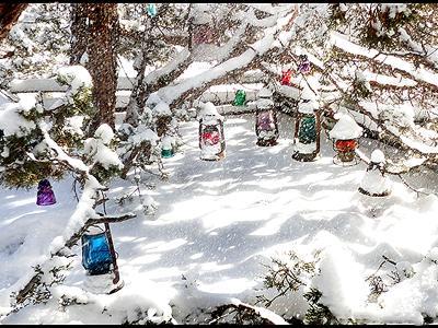Snow Flakes and Lanterns