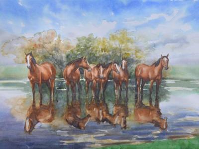 Horses of the delta of the Danube river, 70cm x 50cm, 2017