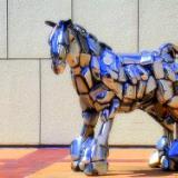Wichita Horse