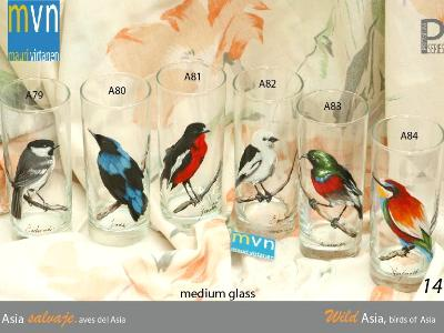 Set of handpainted glasses: BIRDS OF ASIA