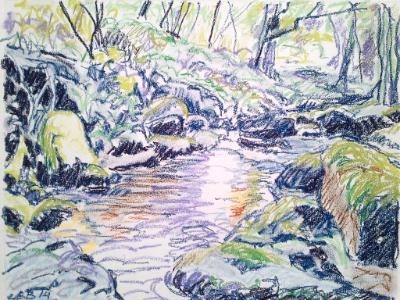 Ruddycleave Water at Buckland in the Moor, Dartmoor