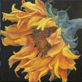 Seductive Sunflower II