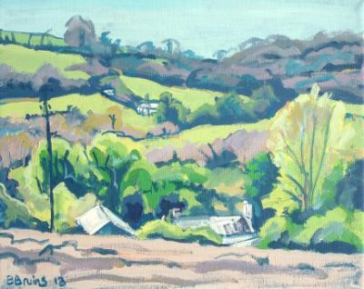 Rural landscape near Swimbridge, North Devon