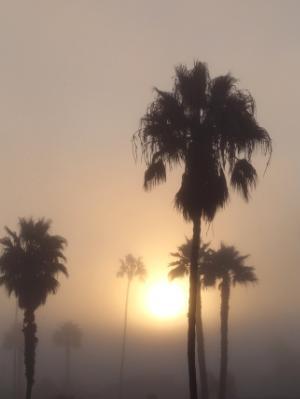 Sunrise at La Jolla Shores