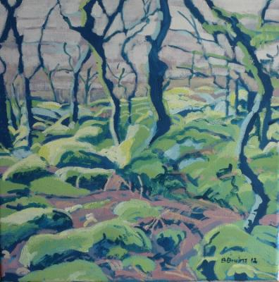 Black-a-tor Copse, Dartmoor