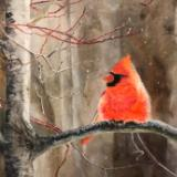 Cardinal among the Flurries. SOLD