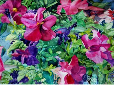 Greenhouse Petunias