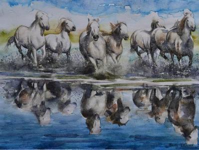 Group of camarge horses,  35cm x 50cm, 2014