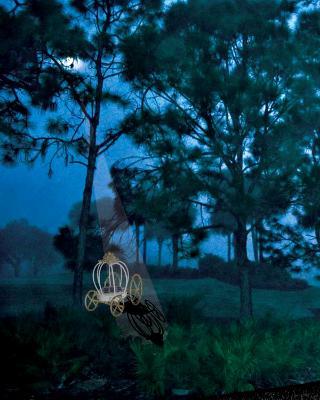 Garden Fantasy - First prize  - Blue Ribbon 2017