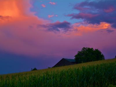 Sunset. Adjala-Tosorontio, Ontario