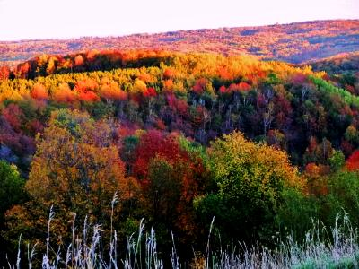 Hockley Valley , Ontario