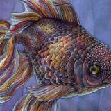 FISHY THINGS