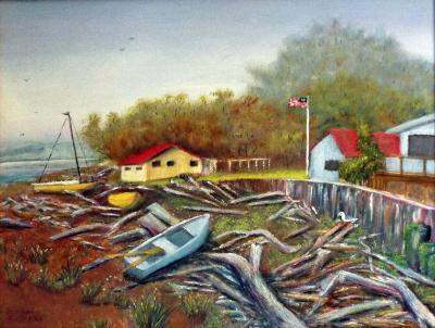 Driftwood at Iverson Beach