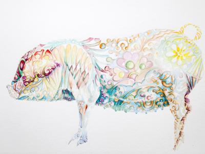 pretty pig 1