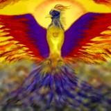 Phoenix: Rebirth