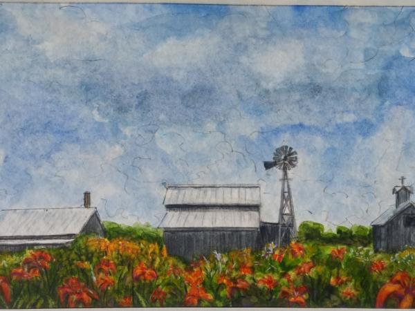 Century Village/Ditch Lillies