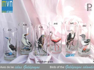 Set of handpainted glasses: BIRDS OF GALAPAGOS