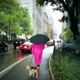 Lili & Frances Grill, New York