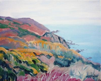 Exmoor cliffs in autumn 2