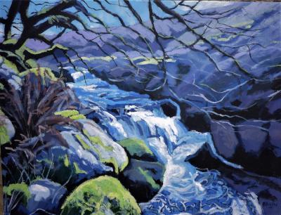 Dartmoor rapids at the West Okement