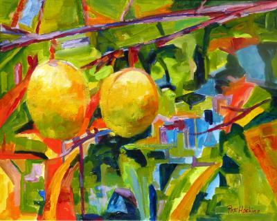 Pond Apples SOLD