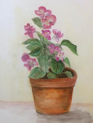 Begonia in Clay