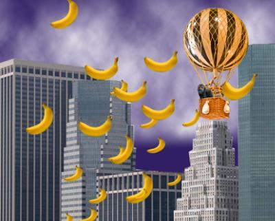Raining bananas in NY