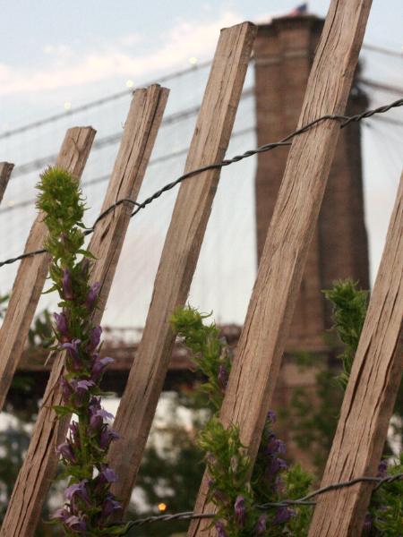 Brooklyn Bridge (with fence)