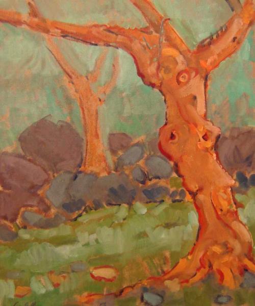 Olive near Jimena