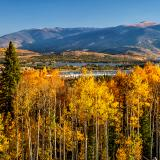 Frisco Bay Aspen Forest Panorama (Click for full width)