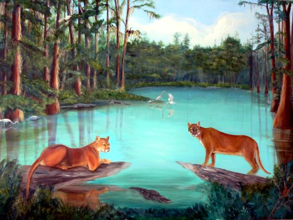 Panthers In The Everglades Marilyn Milsops Art Gallery