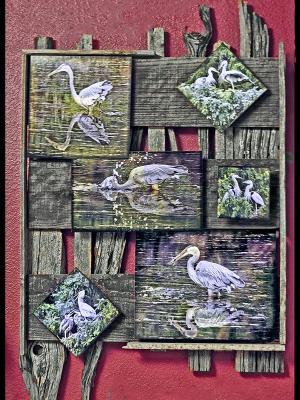 Blue Heron Group