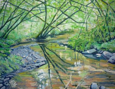 Late spring at Landkey Brook