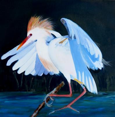 Cattle Egret - oil - 20x20