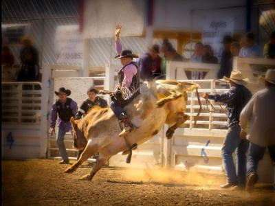 Tygh Rodeo a Tribal Tradition: Beginning of Bull Ride Short Story