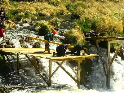 Building a Platform for Netting a Deschutes Tribal Tradition