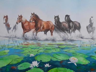 Wild horses of Letea (Romania), 50cm x 70cm, 2017