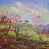 Sold:Spring on the Hill